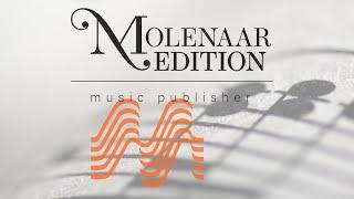A Musical Fantasy - Ennio Salvere