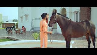 Sarpanchi-offical-video- (mr jatt.com)