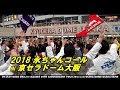 【永ちゃんコール】矢沢永吉コンサート2018 京セラドーム STAY ROCK