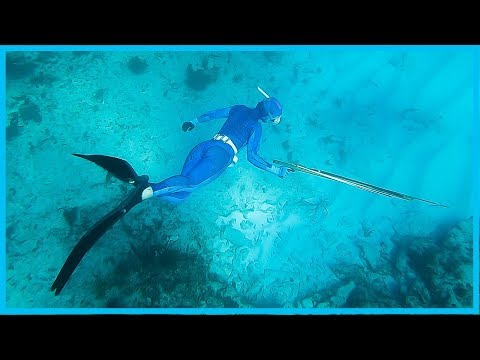 110. SPEARFISHING The Florida Keys! | Learning The Lines