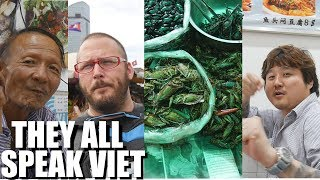 LIVING IN VIETNAM OR CAMBODIA? (speaking Vietnamese + eating bugs)