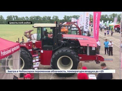 На выставке «День поля» аграрии представляют свои разработки и налаживают деловые связи