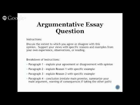 sample argumentative essay on online dating