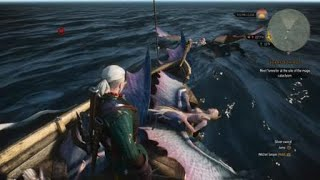 The Witcher 3: Wild Hunt too much boobs on board