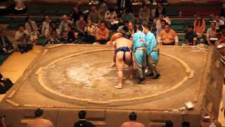 Bloody sumo match
