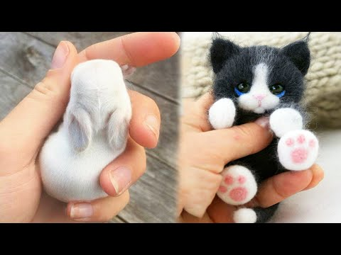 Animals SOO Cute! AWW Cute baby animals Videos Compilation Funniest and Cutest moment of animals #4