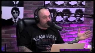 """Easy to Pigeonhole People"" With Amy Schumer Joe Rogan Experience #485"