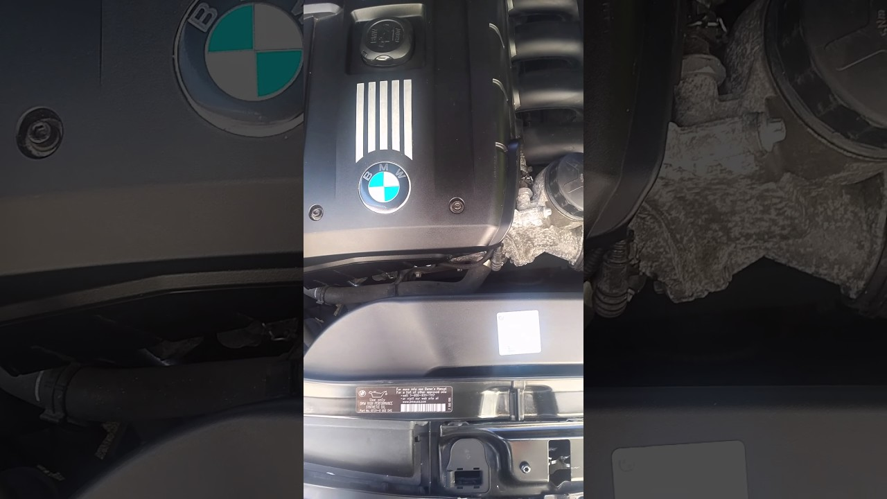 Finding Bmw Paint Code Youtube