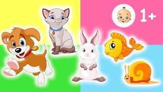 Животные для самых маленьких, УЧИМ ЖИВОТНЫХ, сборник мультиков все серии
