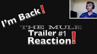 I'm Back!   The Mule Trailer #1 (2018) Reaction