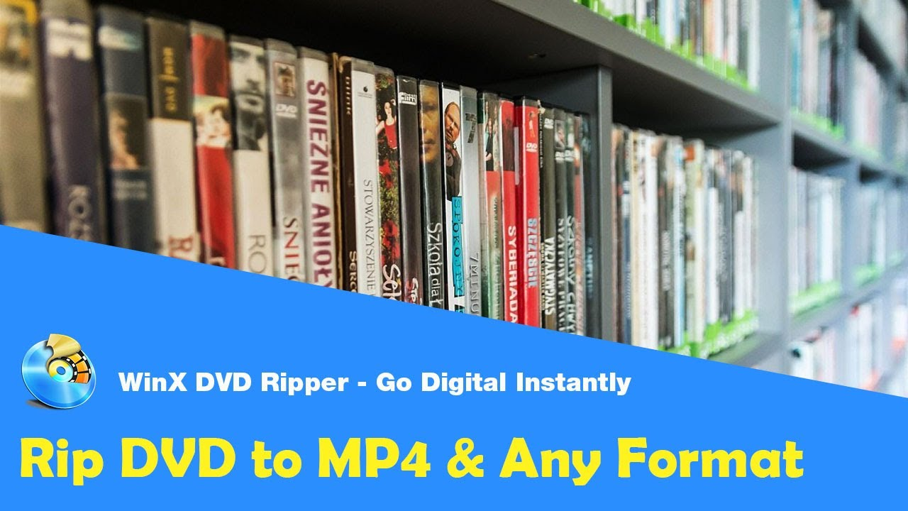 How to rip your entire DVD collection and preserve it - Tech Advisor