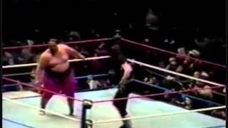 Undertaker vs. Yokozuna (MSG Show, 27.11.1993)