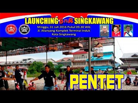 Kontes Burung PENTET atau CENDET|  Launching BnR Singkawang