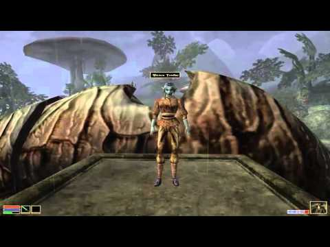 TES Morrowind получение звания мистика в гильдии магов. Золотой святоша (Морровинд)