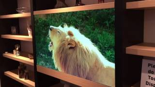 CES 2016: Panasonic's invisible Transparent Display TV