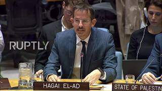 UN: 'Shame on you, collaborator' - Israel rep. to human rights leader