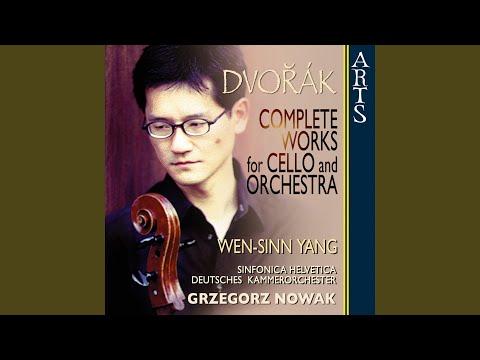 Concerto For Cello And Orchestra In B Minor B 191 Op. 104: I. Allegro