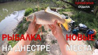 Рыбалка на Днестре 2020 Ловля КАРПА и КАРАСЯ на реке Днестр