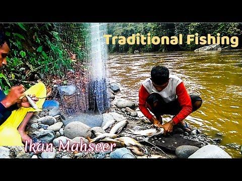 Traditional Fishing: Kehidupan nelayan pedalaman aceh | Ikan asap (Part - #4)