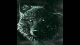 Wolf Song Wolf Cry Wolf Howl  A Tribute to these amazing creatures. One of the best songs.