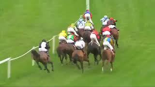 BASEQ AL KHALEDIAH Gr 1 Qatar Total French Arabian Breeders Ch