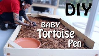 diy-tortoise-pen-and-meet-my-new-baby-aldabra-tortoise-hes-adorable
