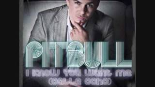 I Know You Want Me ( Calle Ocho ) - Pitbull
