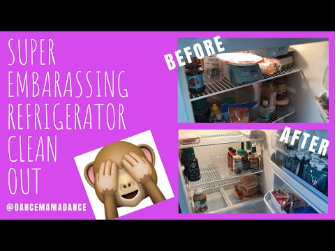 SUPER embarrassing refrigerator/freezer clean 🧼 out!!
