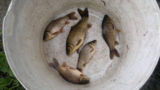 Спортивная рыбалка на мелкого карася