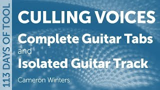 Tool - Culling Voices - Guitar Cover / Tabs / Isolated Guitar