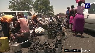 الأزمة الاقتصادية تحول غابات في زيمبابوي إلى مساحات جرداء - (2-12-2019)