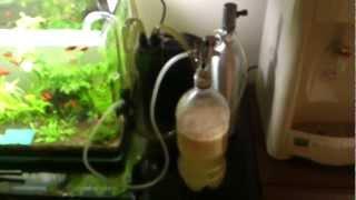 Up Aqua Aquarium Co2 Diffuser - The Effect Of Diy Co2 System (yeast + Sugar)