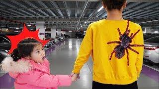 거미 한마리가 어디 갔지?!! 서은이의 할로윈 박스 오픈 할로윈 소품 공개 Where Halloween Spider