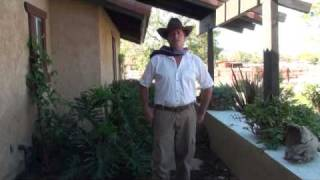 Yard work cleanup company for Grand Terrace, Perris, Gavillan Hills / Springs, Pedley, CA areas