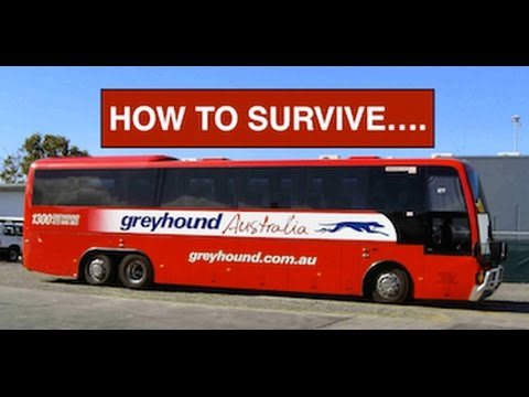 How To Survive Greyhound Australia Youtube