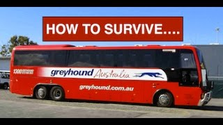 How to Survive Greyhound Australia