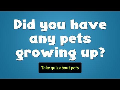 Quiz about pets