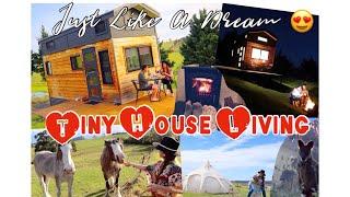 Part 1:tiny House Living-nestled In Nsw Australia