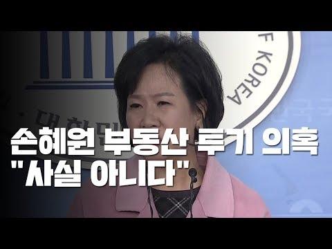 """손혜원 부동산 투기 의혹...민주당 """"당 차원 조사"""" / YTN"""