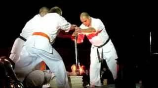 Двенадцать ударов Сергея Плеханова. Киокушин - рулит!