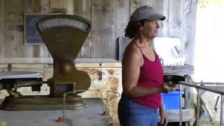 Seven Springs Farm: CSA Farm Model