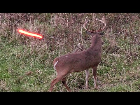 20 Shots in 20 Minutes! (ULTIMATE Bowhunting Compilation)