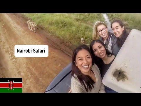 Safari in Nairobi, Kenya