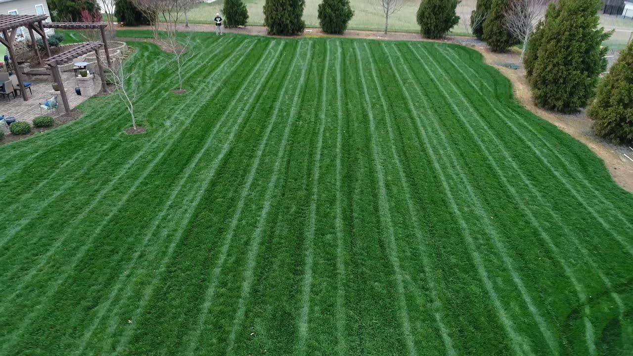 diy - mow lawn