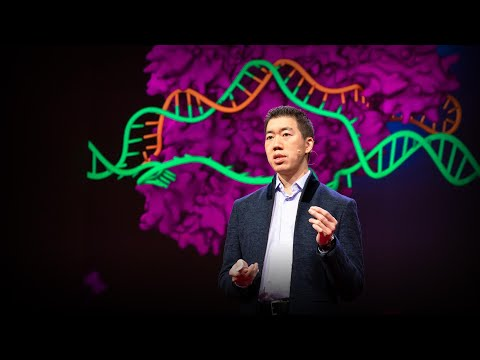 Can we cure genetic diseases by rewriting DNA? | David R. Liu ...