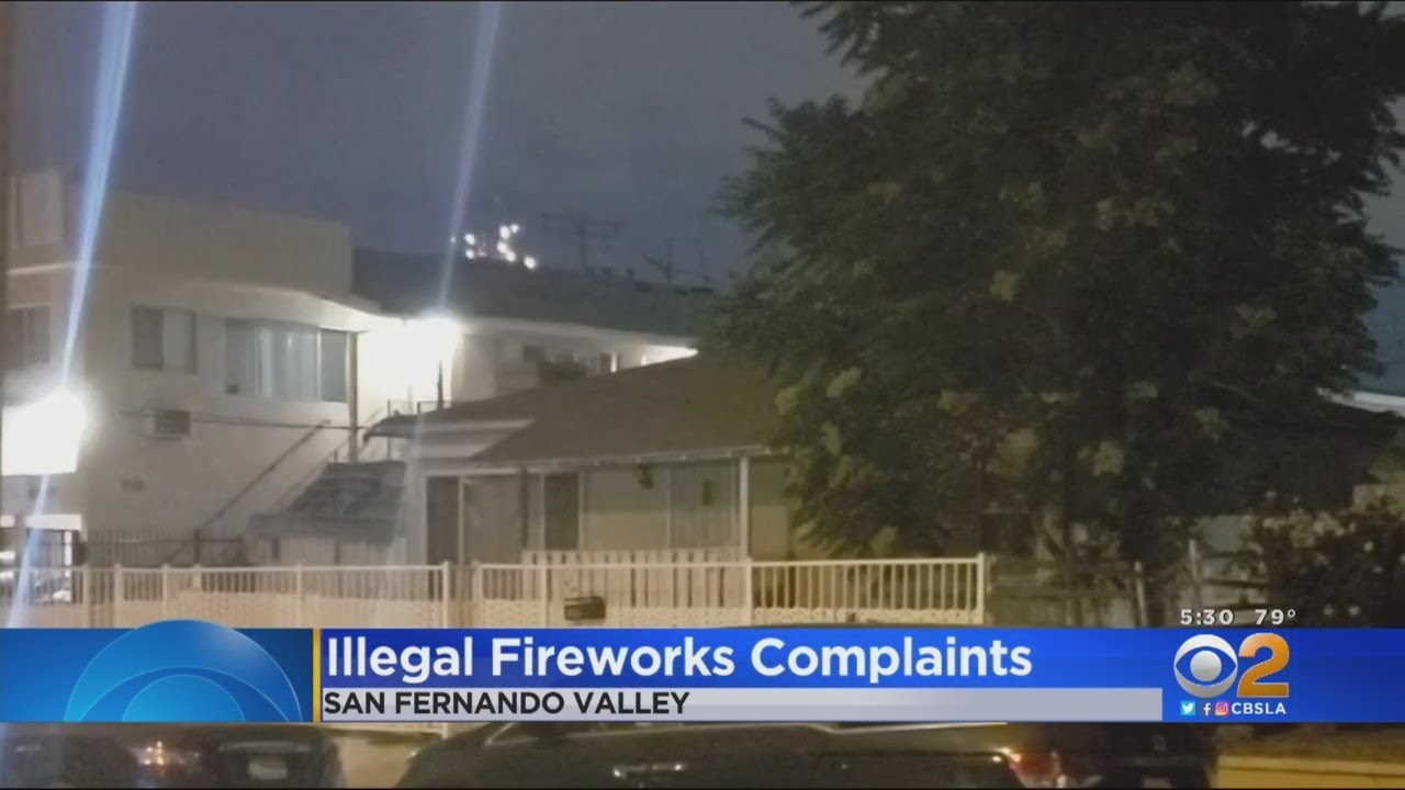 San Jose dog terrorized to death by 4th of July fireworks