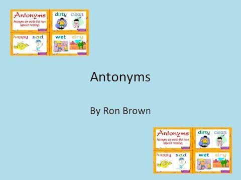 Antonym Song w/Lyrics