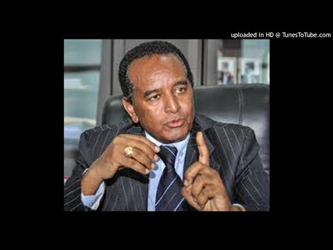 TSENAT RADIO - Interview with Major Investor Dawit Gebregziabher