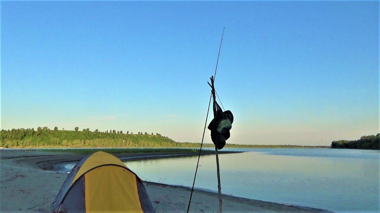 ОНИ ОЗВЕРЕЛИ!!! Рыбалка на Реке. Щука Спиннинг