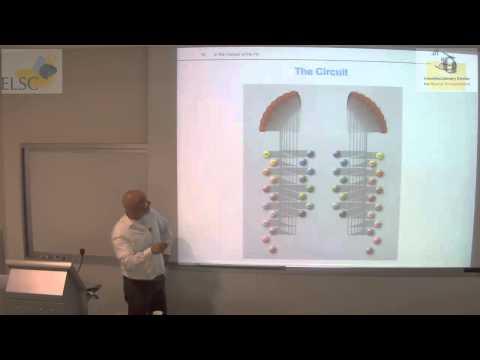 Heller Lecture - Alexander Borst